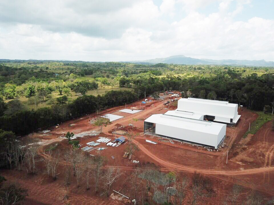 Multi-span steel structure building: Nicaragua Coffee Factory